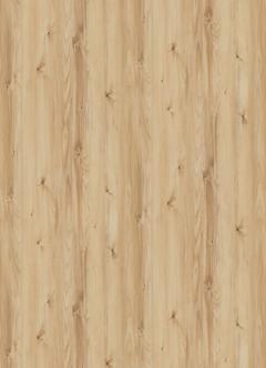 borovica alpská